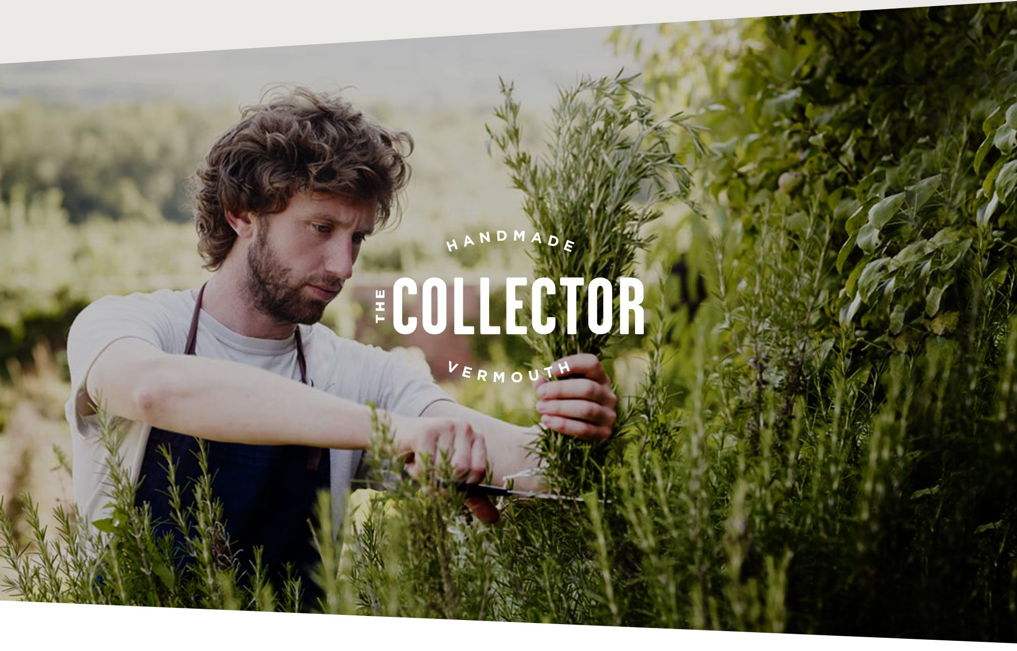 Collector vermouth brand identity logo design with brand photography