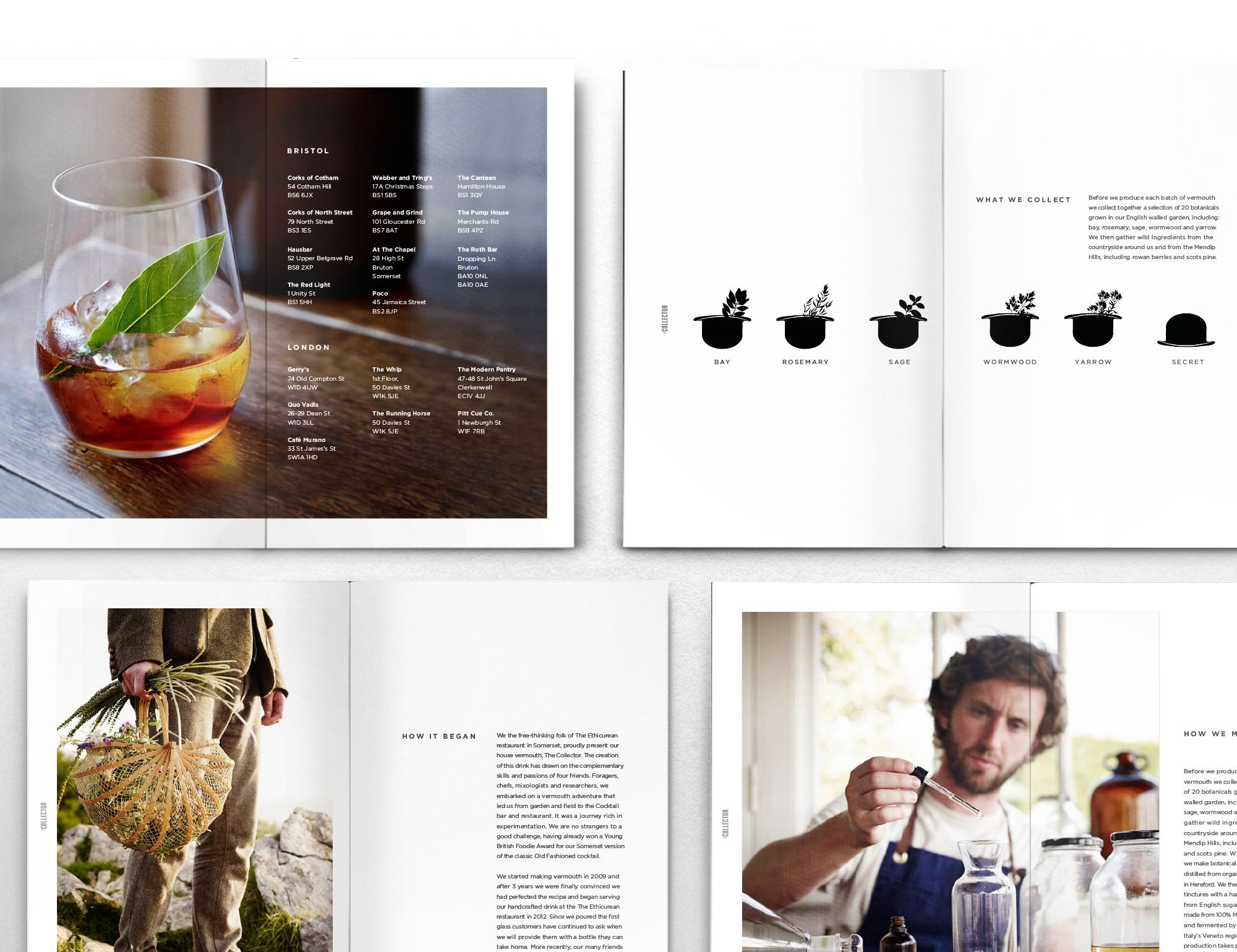 Collector vermouth brochure print design