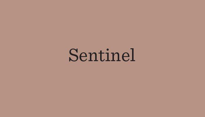 sentinel typeface